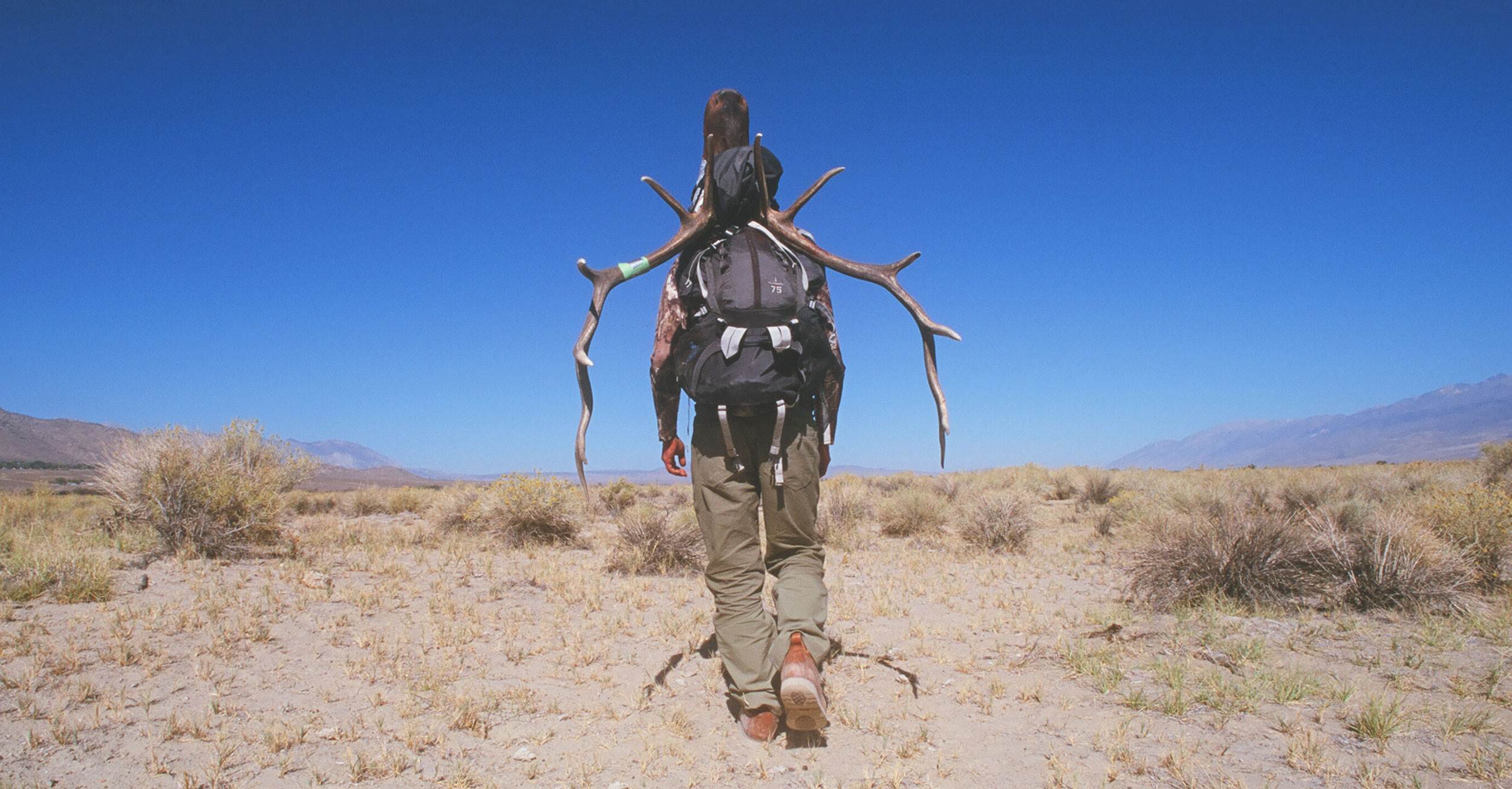 Kika Worldwide Outfitters, Tule Elk, Bighorn Sheep, California, Guides, Hunting